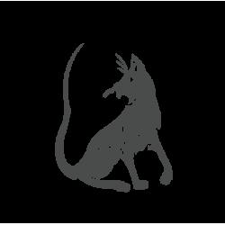 0027. Кошка