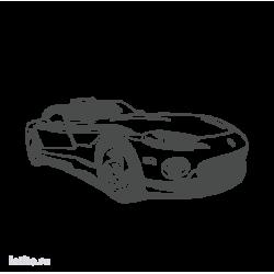0066. Кабриолет