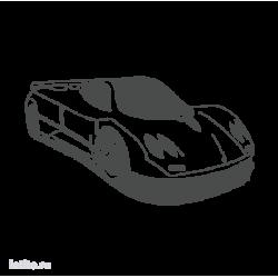 0081. Спортивная машина