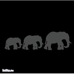 0132. Три слона