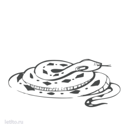 0217. Змея