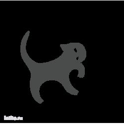 0225. Кот