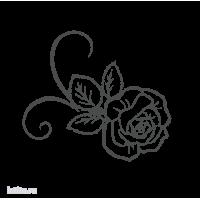 0231. Роза