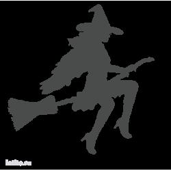 0265. Ведьма на метле