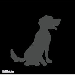 0268. Собака
