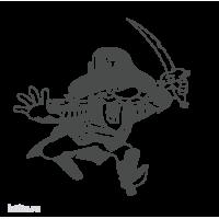 0290. Пират