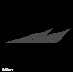 0488. Полоса