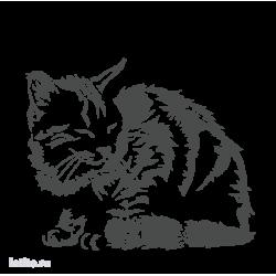 0499. Кот