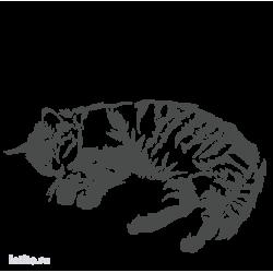 0501. Спящий кот