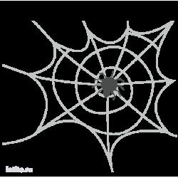 0521. Паук на паутине