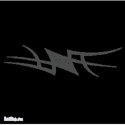 0546. Полоса с финшиным флагом