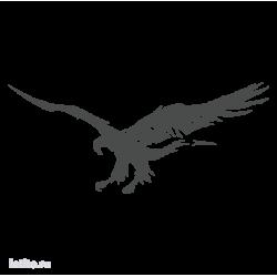0548. Парящая птица