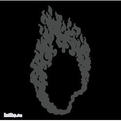 0593. Языки пламени