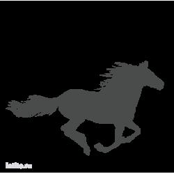 0645. Бегущая лошадь