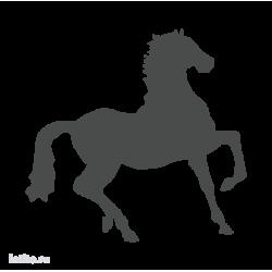 0649. Лошадь