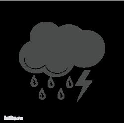 0667. Погода. Дождь с грозой