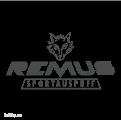 0817. Remus. Sportauspuff