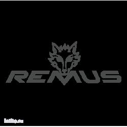 0822. Remus