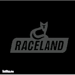0845. Raceland