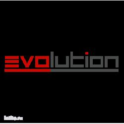 0865. Evolution