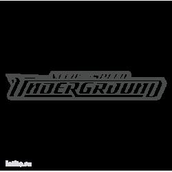 0889. Need for Speed: Underground