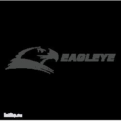 0893. Eagleye