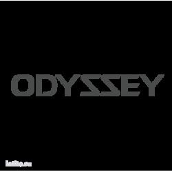 0964. Odyssey
