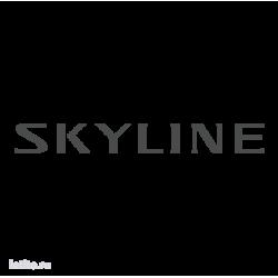 0999. Skyline