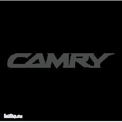 1010. Camry