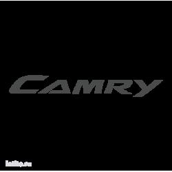 1011. Camry
