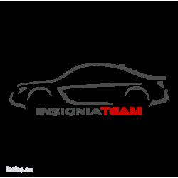 1032. Insignia Team