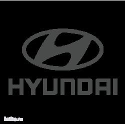1040. Hyundai