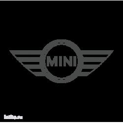 1071. Mini