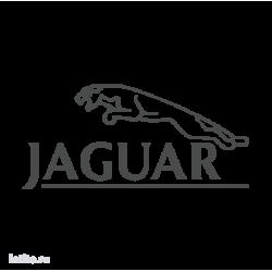 1076. Jaguar