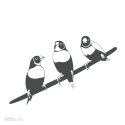 1107. Птицы на ветке