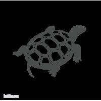 1108. Черепаха