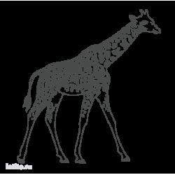 1109. Жираф
