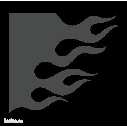 1231. Языки пламени