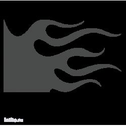 1254. Языки пламени