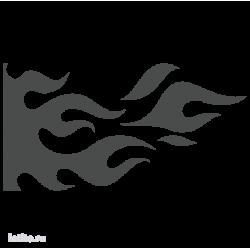 1333. Языки пламени