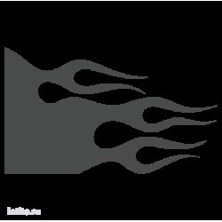 1458. Языки пламени