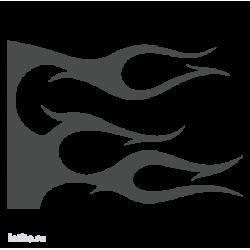 1647. Языки пламени