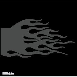1769. Языки пламени
