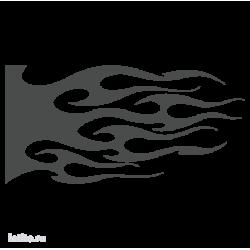 1829. Языки пламени