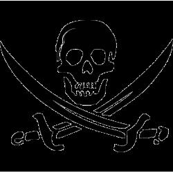 2144. Пират