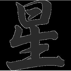 2270. Иероглиф (звезда)