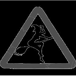 2275. Знак Ведьма за рулем