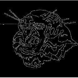 2282. Голова тигра