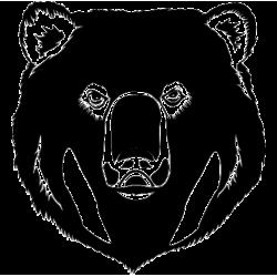 2289. Голова медведя