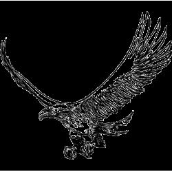 2293. Орел